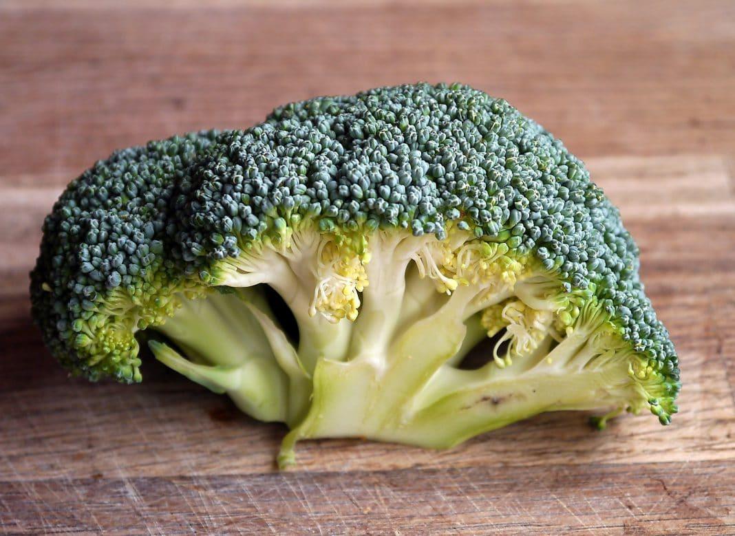 Peut-on déshydrater le brocoli et conserver tous ses nutriments ?