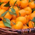 Vitamine C: liposomale comment la prendre?