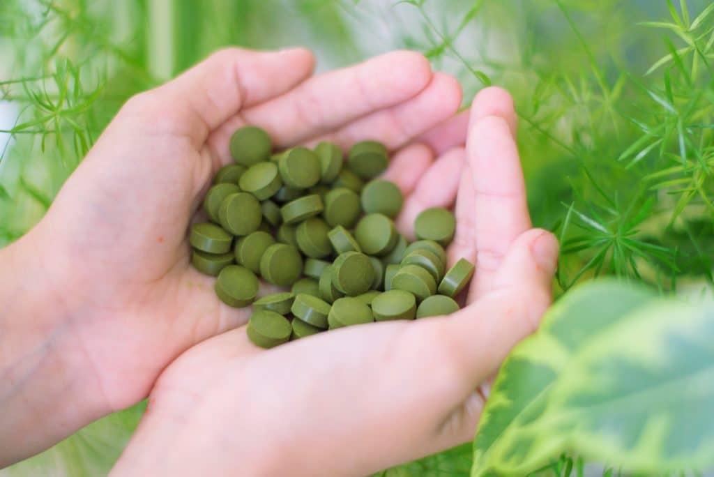 Quels sont les bienfaits des algues et micro-algues ?