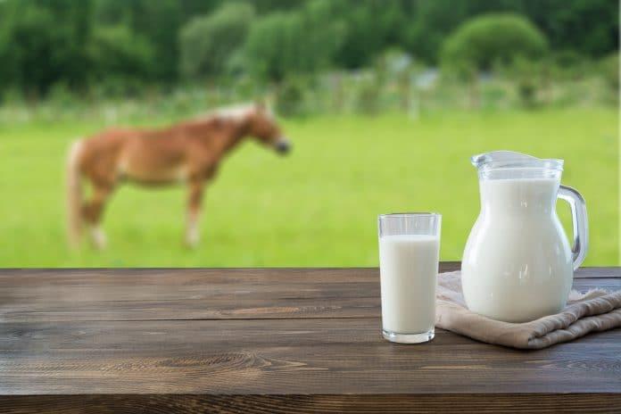 Le lait de jument aide-t-il à soigner le psoriasis ?